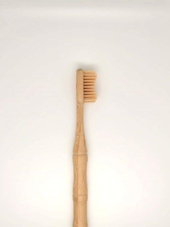 cepillo compostable